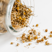 Acne for Chamomile